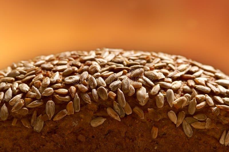 Download Whole Grain Bread Stock Photo - Image: 26890240
