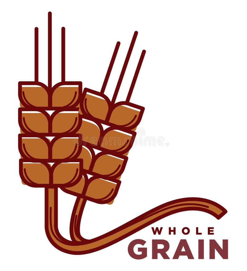 Whole grain product logotype with ripe wheat ears. With long stems isolated cartoon flat vector illustration on white background. Healthy organic natural food royalty free illustration