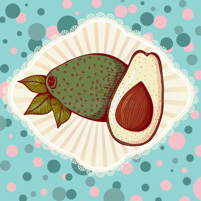 Whole and half avocado royalty free illustration