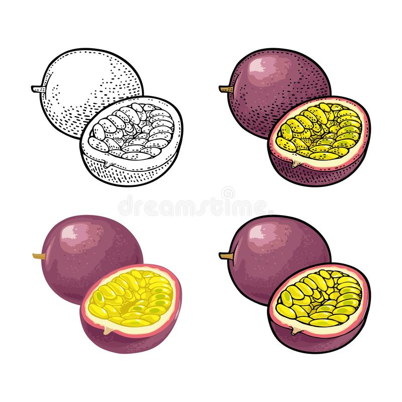 Whole and half maracuya with seed. Vector engraving vector illustration
