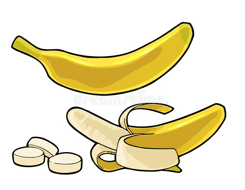 Whole, half peeled and slice banana. Vector black vintage engraving royalty free illustration