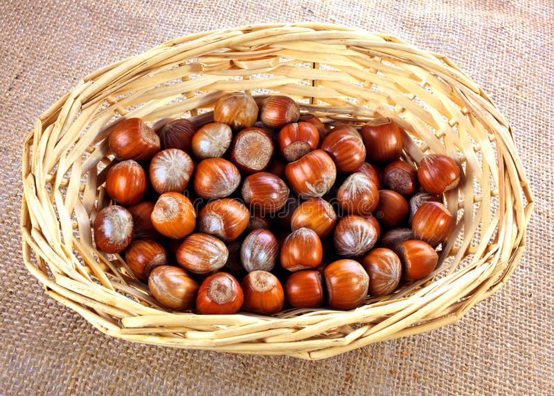 Whole Hazelnuts Royalty Free Stock Photo