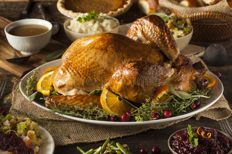 Whole Homemade Thanksgiving Turkey royalty free stock photo