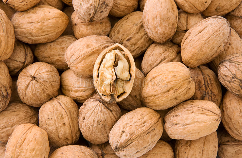 Download Whole and hulled walnuts stock image. Image of brown - 17441149