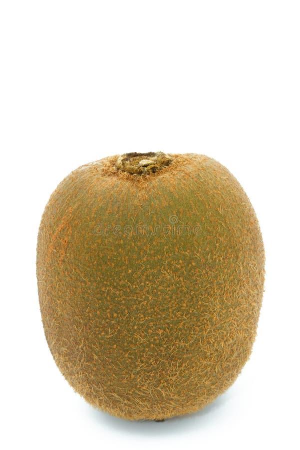 Download Whole kiwi fruit unpeeled stock photo. Image of kiwi - 12400822