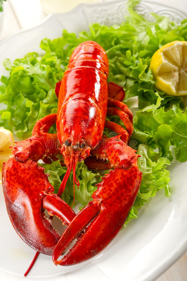 Whole Lobster With Salad Stock Images