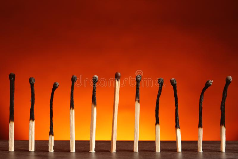 Whole match among burnt ones on table. Uniqueness and difference concept. Whole match among burnt ones on table against color background. Uniqueness and royalty free stock images