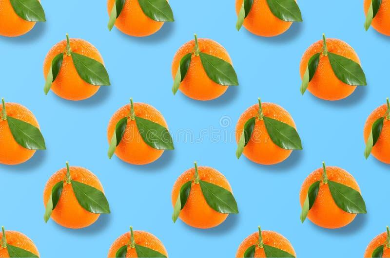 Whole orange fruits pattern on colorful background stock photo