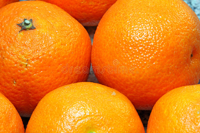 Whole oranges closeup for a background. royalty free stock images