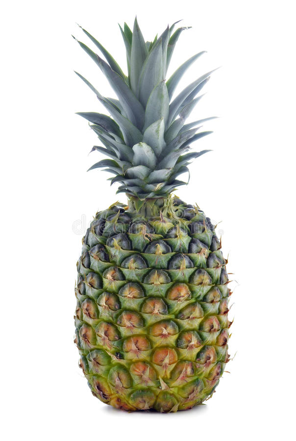 Download Whole Pineapple Royalty Free Stock Photos - Image: 24380858