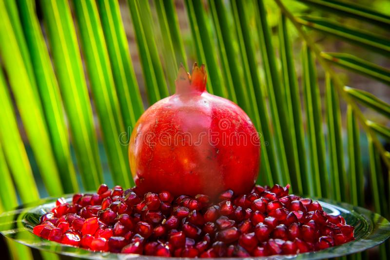 Whole pomegranate and seeds on the background of green palm leaves. Organic bio fruits, food on vacation in tropical countries.  royalty free stock photo