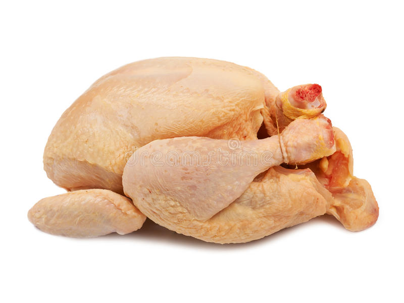 Whole raw chicken isolated stock photography