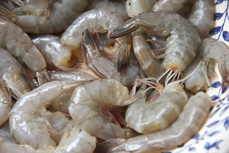 Whole raw prawns royalty free stock photography