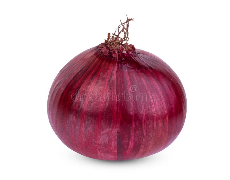 Whole of red onion bulb isolated on white stock photos