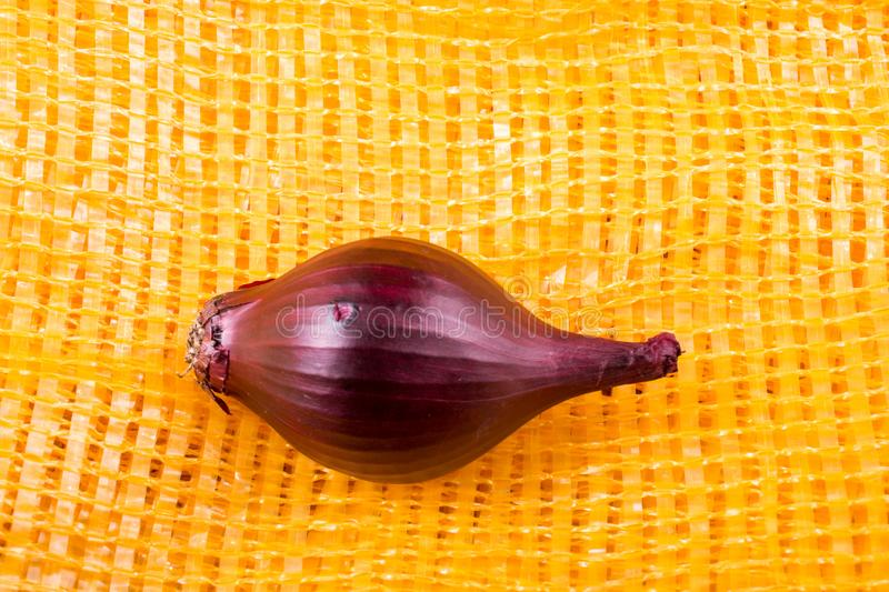Red onion bulb on canvas stock images