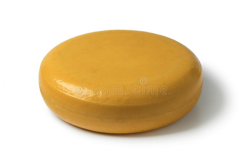 Whole round yellow Gouda cheese royalty free stock image