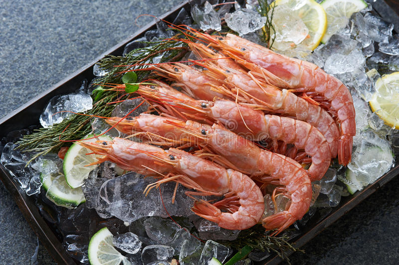 Whole shrimps. Or prawns served on ice and citrus slices in black tray royalty free stock photo