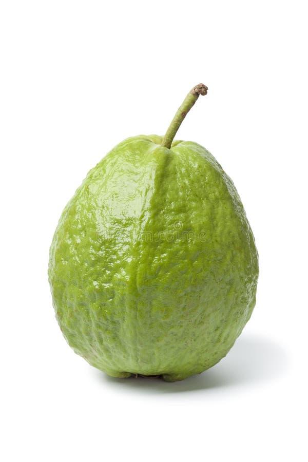 Whole Sinfgle Fresh Guava Fruit Royalty Free Stock Photography