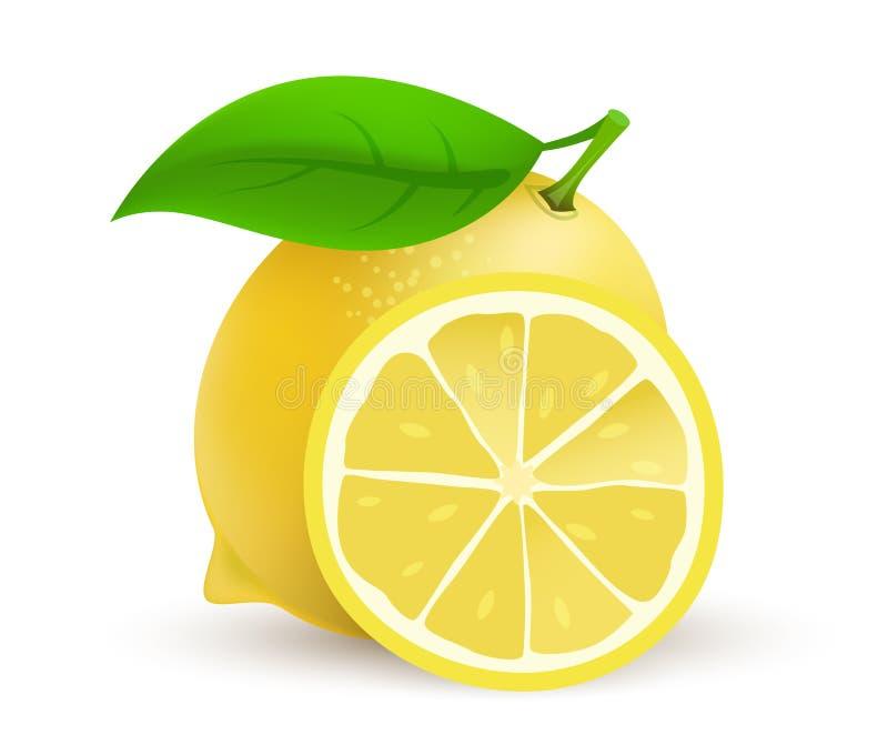 Whole single Lemon fruit - realistic vector icon illustration isolated on white background. stock illustration