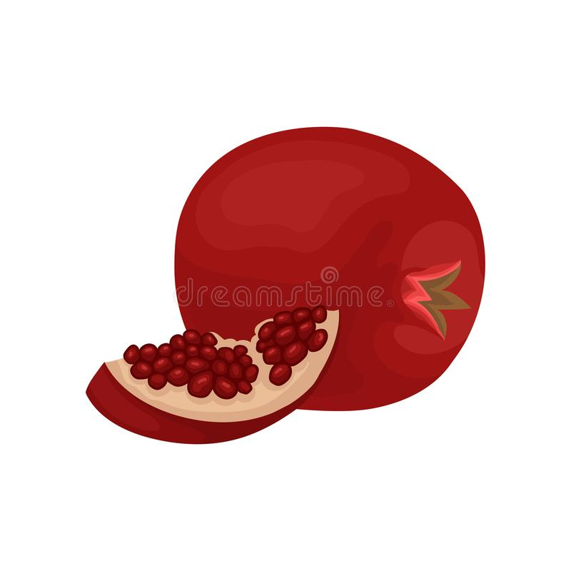Whole and small slice of fresh pomegranate. Tasty fruit with juicy seeds. Organic and healthy food. Flat vector icon royalty free illustration