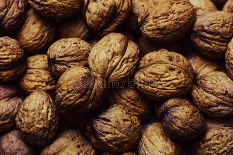 Whole walnuts stock images