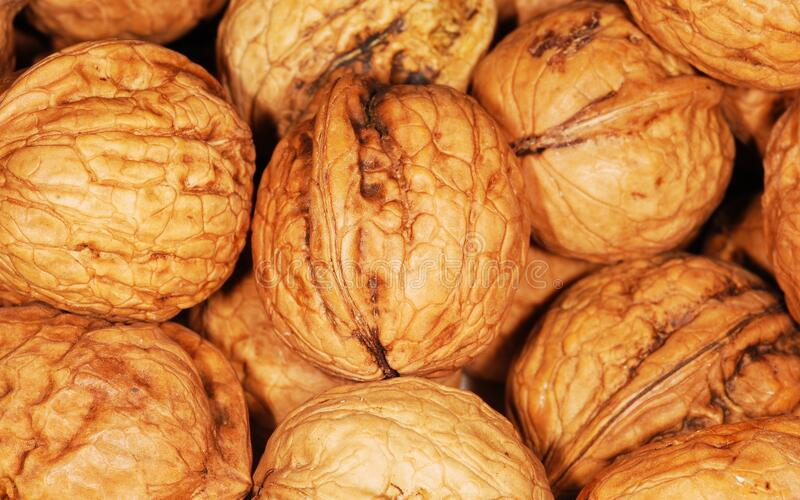 Whole walnuts in shell royalty free stock photos
