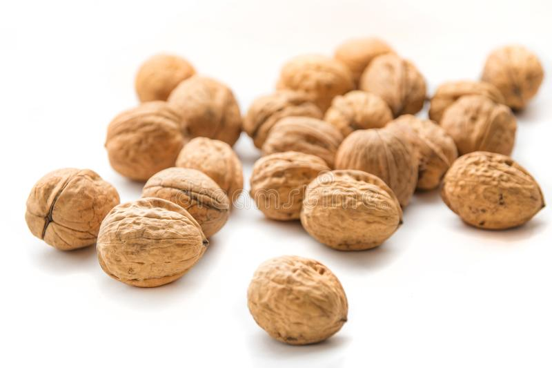 Whole walnuts in white background. Bunch of walnuts isolated stock photos