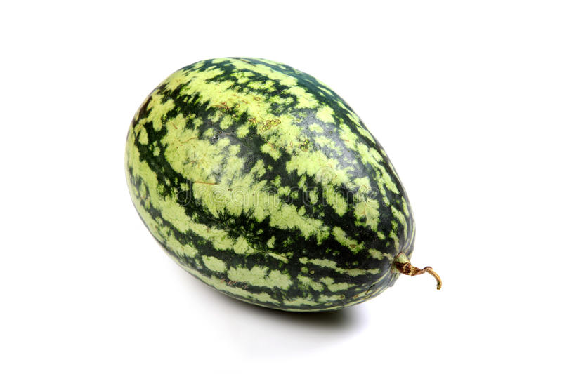 Download Whole watermelon stock image. Image of ripe, concept - 14896251