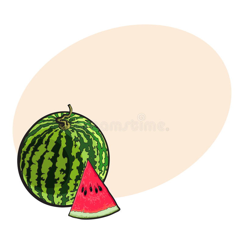 Whole watermelon and red triangular piece with seeds, sketch illustration vector illustration