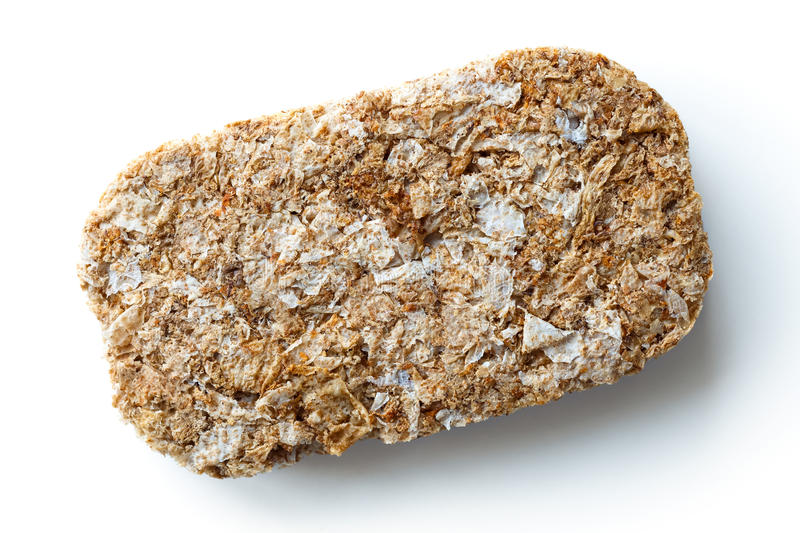 Whole wheat breakfast biscuit. royalty free stock image