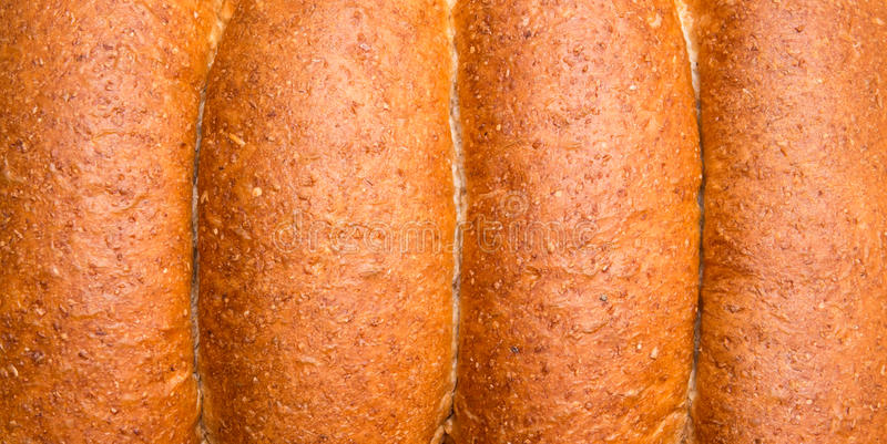 Download Whole wheat buns stock photo. Image of fresh, meal, lunch - 35208492