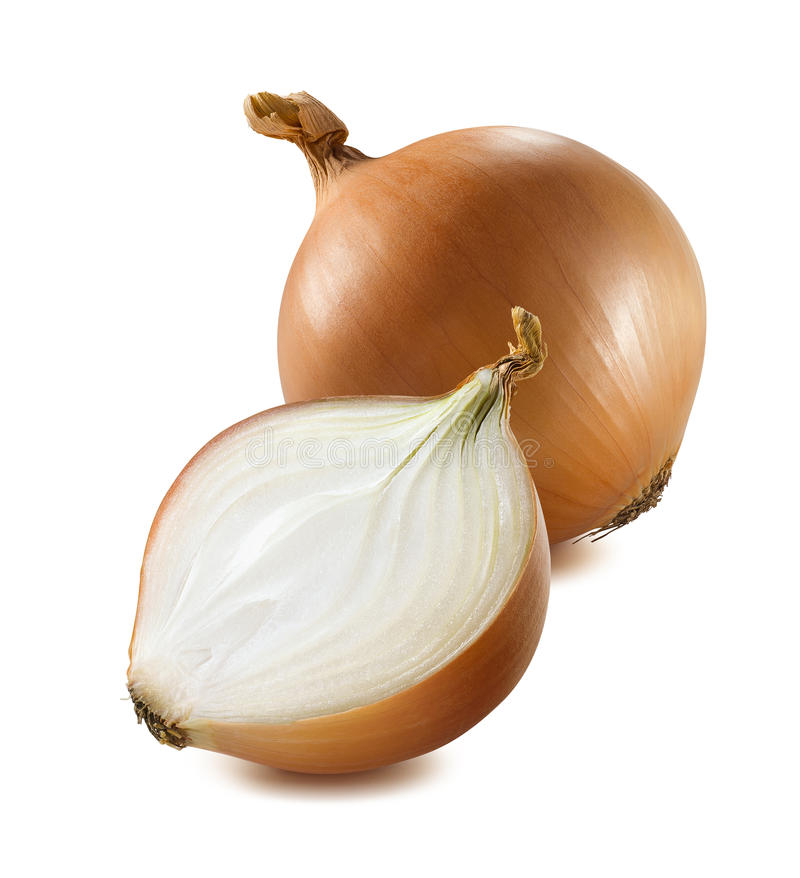 Whole yellow onion half piece isolated on white background royalty free stock photography