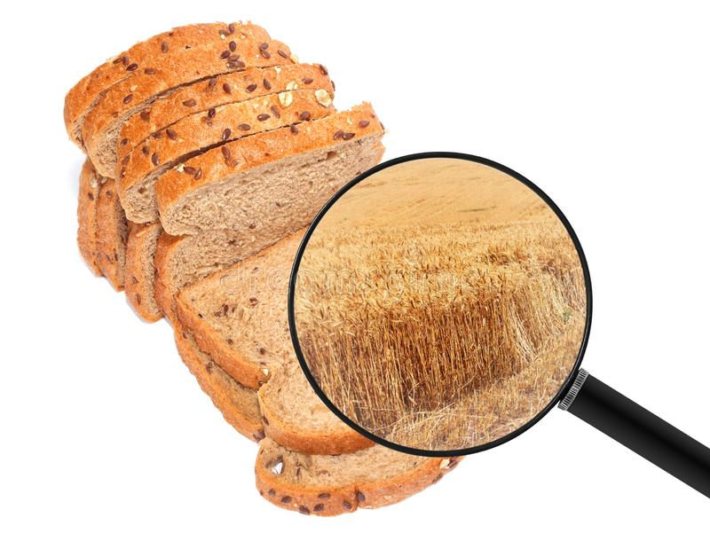 Wholegrain brood van gesneden brood en landbouwdietarwegebied in een vergrootglas wordt getoond royalty-vrije stock foto's