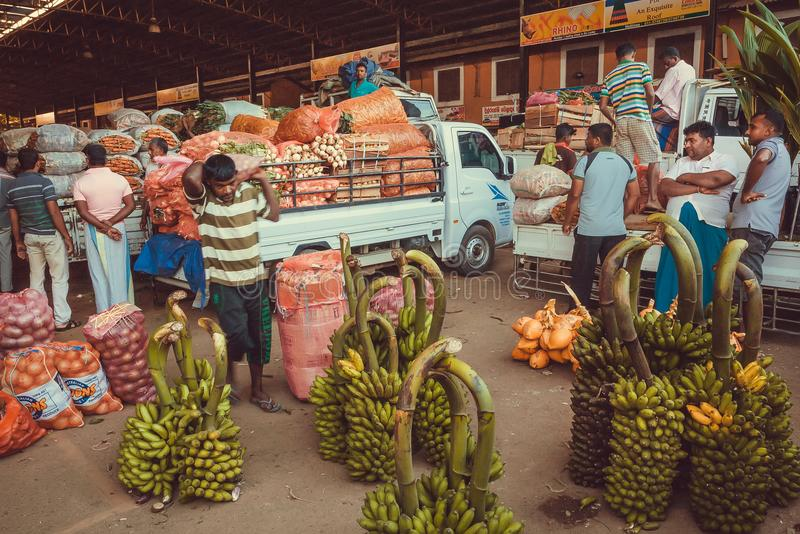 Wholesale customers and traders of village fruit market and many bags of coconuts, green banana royalty free stock images