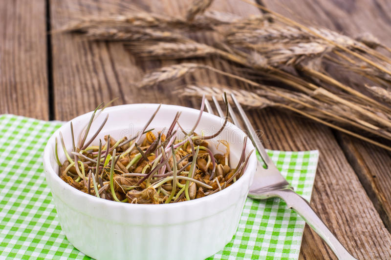 Wholesome food-grains germinated stock images
