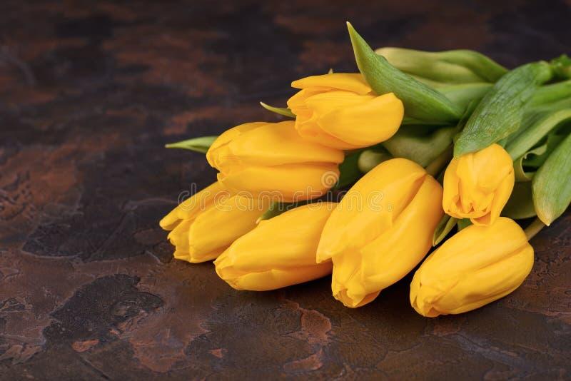 Wiązka żółci tulipany na ciemnym tle zdjęcie stock