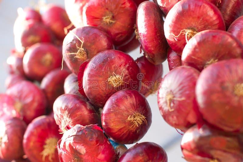 Wiązadło Czerwone cebule obraz stock