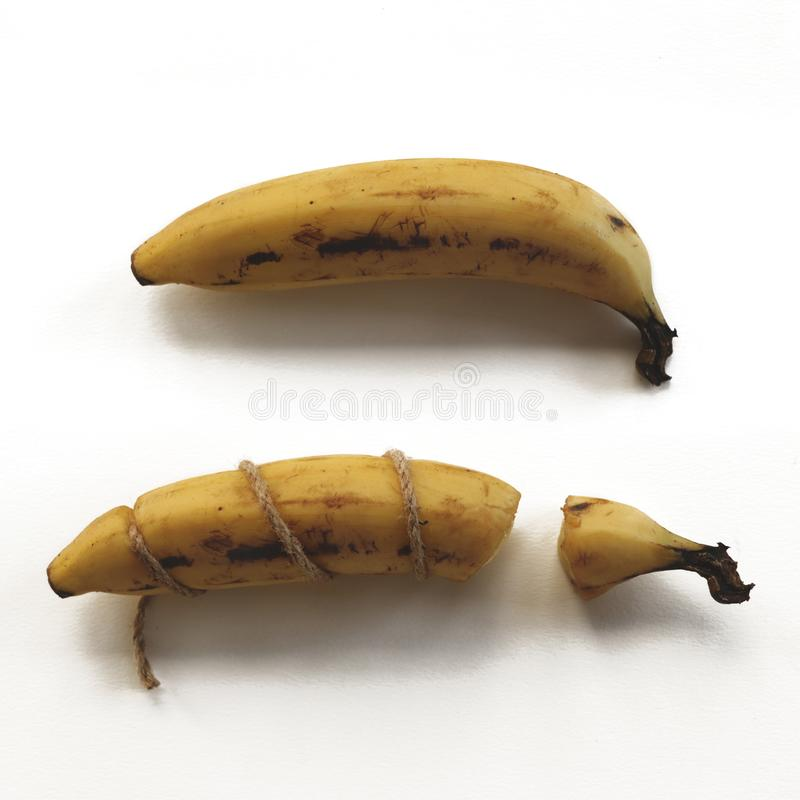Wiązany i Łamany Istny banan z Nietknięty Jeden zdjęcia royalty free