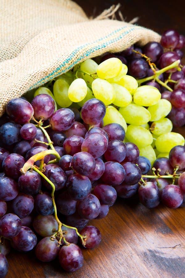 Wiązek czarni i zieleni winogrona fotografia royalty free