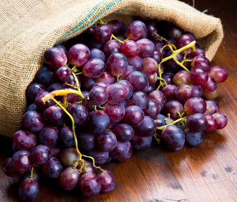 Wiązek czarni winogrona na drewnianym zdjęcie royalty free