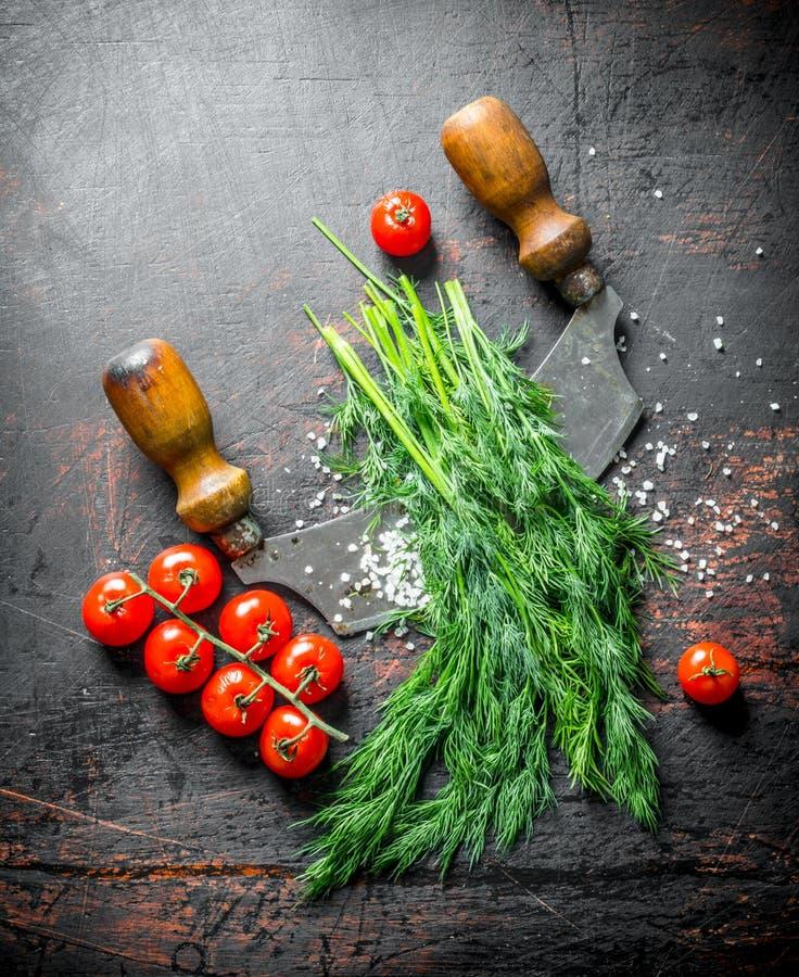 Wiązka świeży koper z pomidorami zdjęcia royalty free