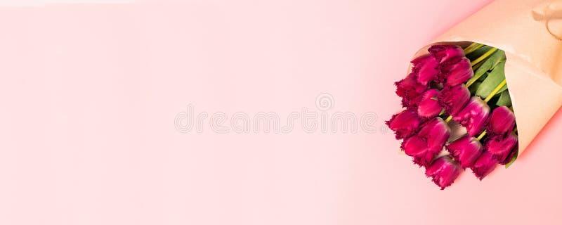 Wiązka świezi wiosen menchii tulipany na żywym koralowym tle, kopii przestrzeń obraz stock