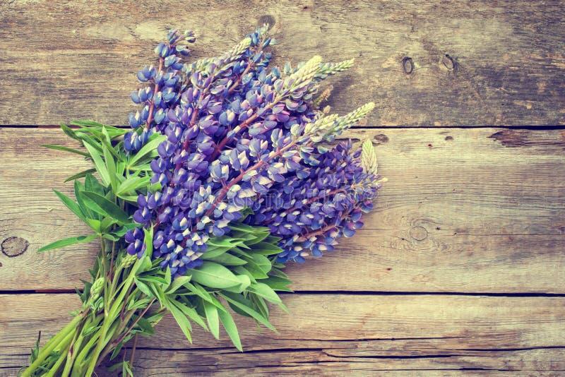 Wiązka błękitny lupine kwitnie na drewnianym tle fotografia royalty free
