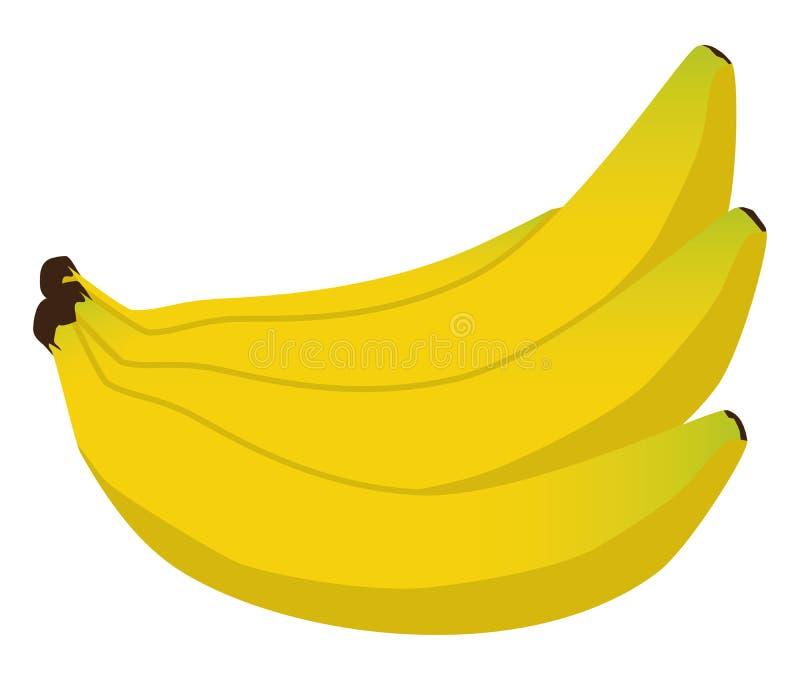 Wiązka banany ilustracja wektor