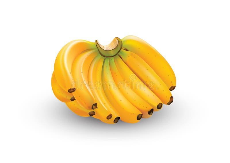 Wiązka banany w sztuce ilustracji