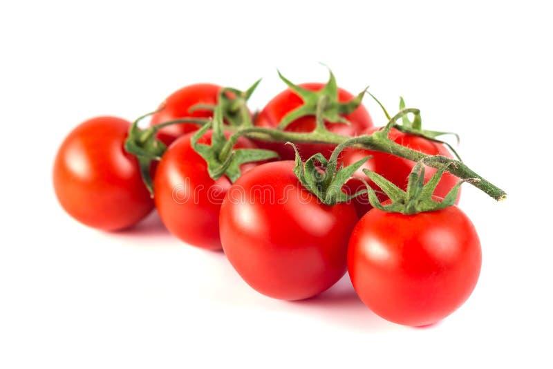 Wiązka czerwoni smakowici świezi pomidory na białym tle zdjęcia stock