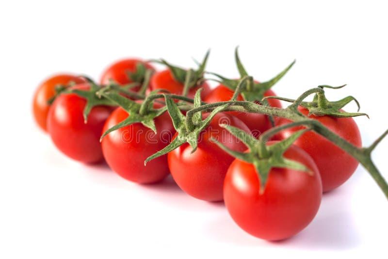 Wiązka czerwoni smakowici świezi pomidory na białym tle zdjęcie stock