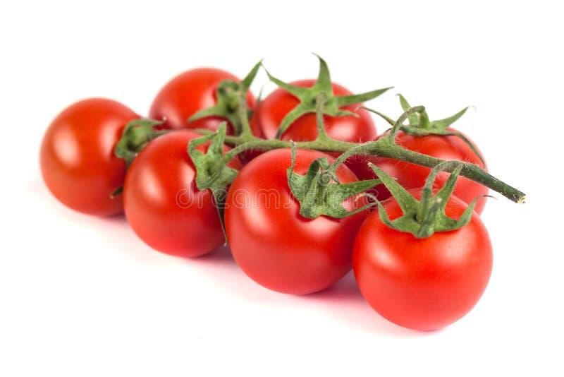 Wiązka czerwoni smakowici świezi pomidory na białym tle zdjęcia royalty free