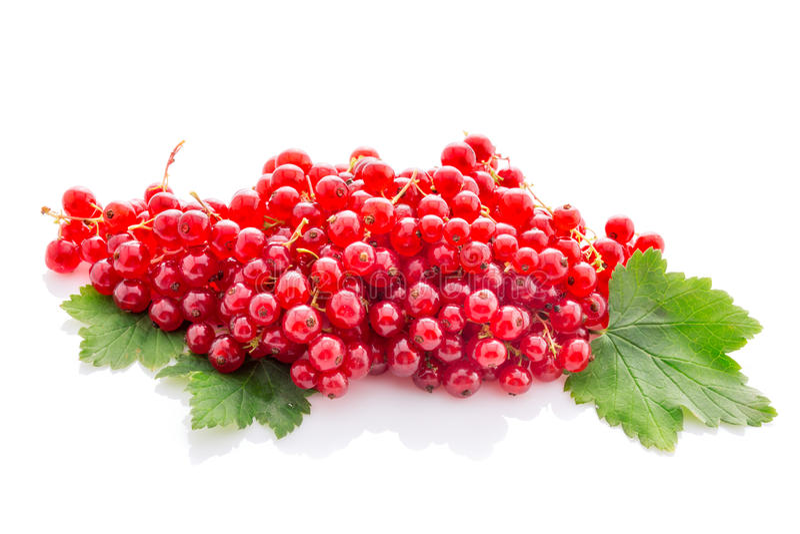 Wiązka czerwony rodzynek z liśćmi odizolowywającymi na bielu fotografia stock