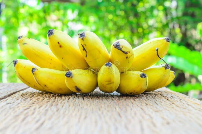 Download Wiązka Dojrzali Banany Na Drewnianej Desce Z Plamy Zieleni Liściem Obraz Stock - Obraz złożonej z łasowanie, odżywczy: 53787867